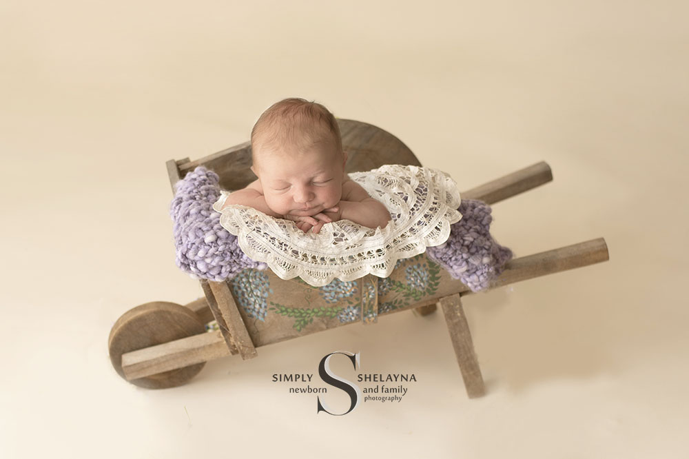 composite portrait of Amelia in wheelbarrow  CNY Newborn Photography