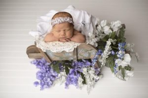 Read more about the article Ella | Syracuse Newborn Photographer